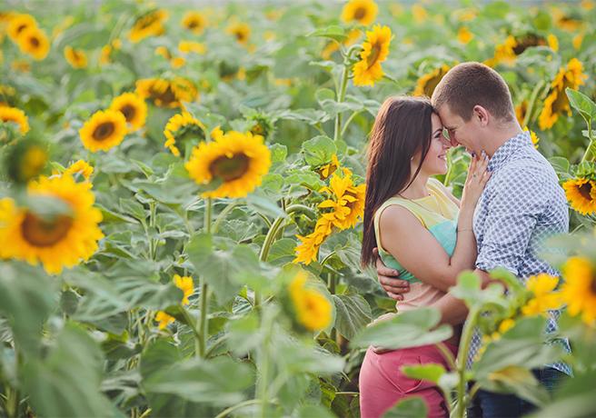 ひまわり畑の中でプロポーズをするカップル