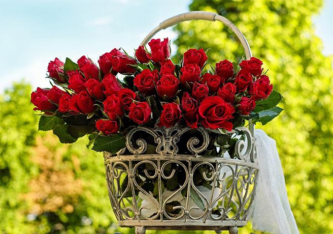 バスケットに置かれた赤いバラの花束