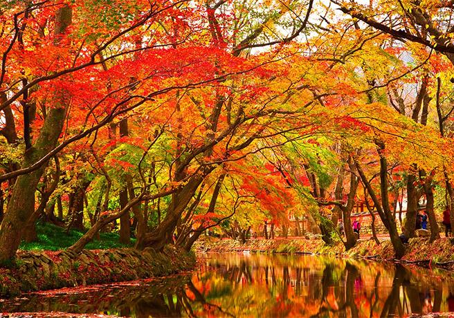 秋は祝日の宝庫!彼女と行きたい秋のオススメデートプラン