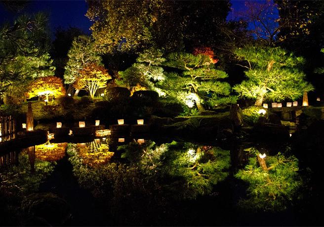秋のデートは公園・庭園で!季節を感じる楽しみ方