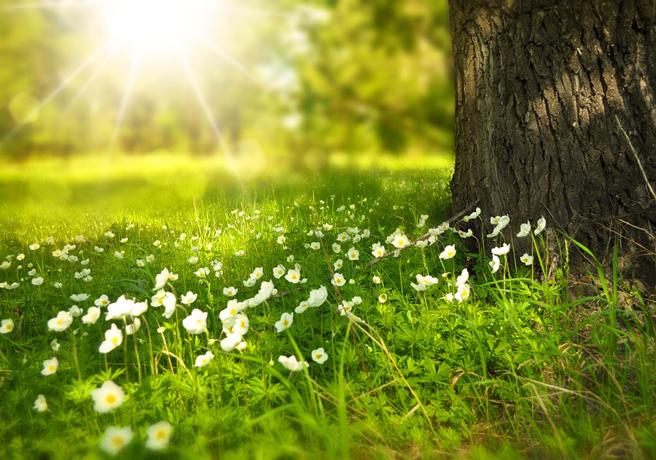 春は出会いの季節。初デートにオススメしたい公園デートのポイントをご紹介!