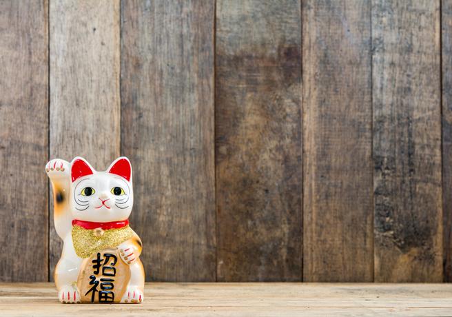 木の壁の前に置かれた招き猫